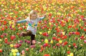 دانلود pdf کتاب تندرستی در بهار با رعایت این ۸ مورد رایگان
