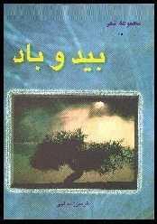 دانلود pdf کتاب  شعر بید و باد  فریبرز یدالهی رایگان