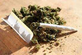 دانلود pdf کتاب همه چیز درباره ماده مخدر گُل رایگان